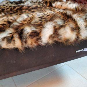 Buddelmatte Leopard